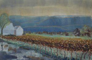 Finger-Lakes-Vineyard-After-the-Rain-e1492187926862