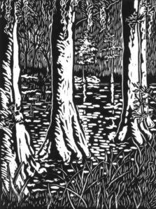 Middleton-Gardens-Swamp