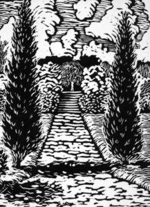 Middleton-Gardens-Treespath
