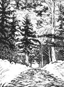 Ridge-Road-Franconia