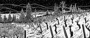Winters-Snow-Blankets